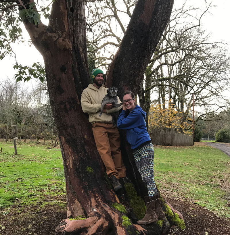 Eugene-Arborist-About-GreenTree-Arborists